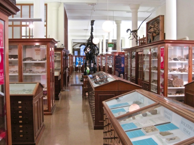 Geotourism: The Sedgwick Museum of Geology